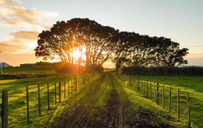 Geografía y clima de Nueva Zelanda