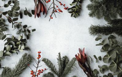 Nueva Zelanda en Navidad