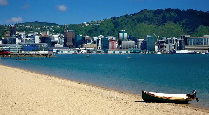 Oriental Bay Beach