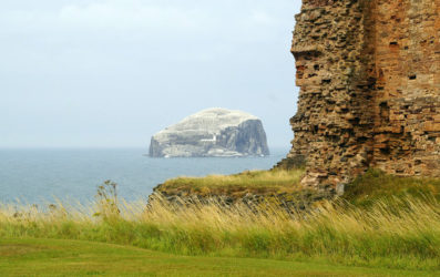 Bass Rock, el impresionante refugio marino de los alcatraces