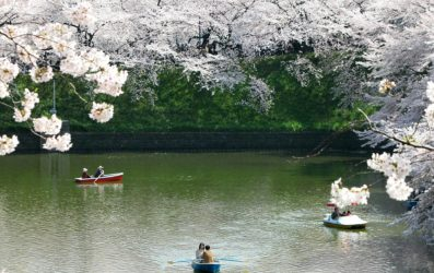 Guía para viajar a Japón en primavera: consejos y qué visitar
