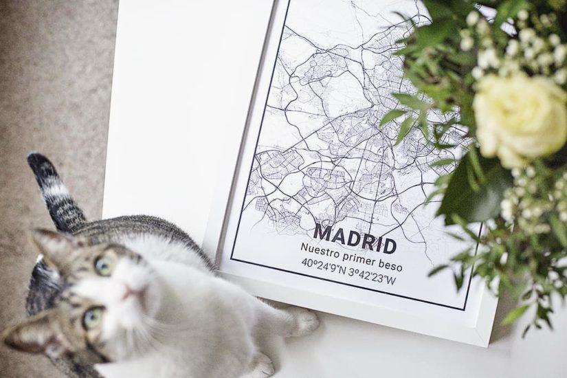 Láminas de Madrid de Mapness.io