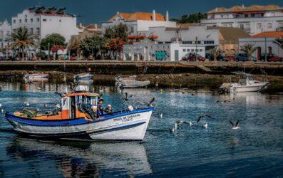 ¿Dónde comer en el Algarve? Descubre restaurantes con encanto