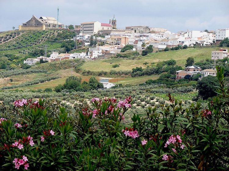 Montilla | Foto: Rafael Jiménez / CC BY-SA